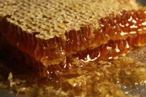 smaller honeycomb_web